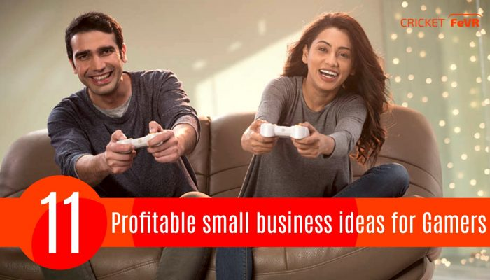 11 Profitable small business ideas for Gamers   Cricket FeVR